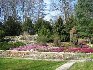 Botanischer Garten Potsdamwiki